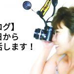 【ブログ】今日から復活します!