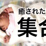 【赤ちゃん動画】癒されたい人集合!