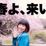 【ダイエット経過報告その②】生配信の裏側!